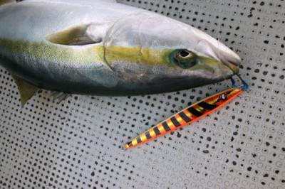 西岡遊漁の2021年1月15日(金)5枚目の写真