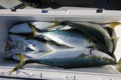 西岡遊漁の2021年1月20日(水)5枚目の写真