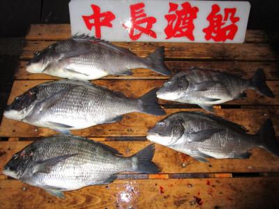 中長渡船の2021年1月28日(木)2枚目の写真