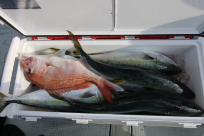 西岡遊漁の2021年1月27日(水)5枚目の写真