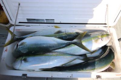 西岡遊漁の2021年1月28日(木)5枚目の写真
