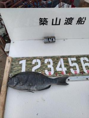 築山渡船の2021年1月31日(日)3枚目の写真
