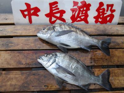 中長渡船の2021年1月31日(日)1枚目の写真