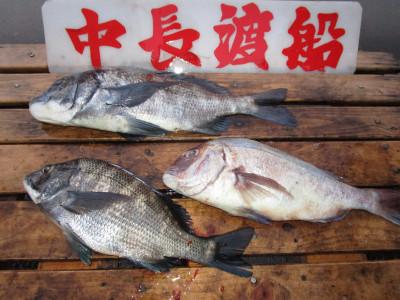 中長渡船の2021年2月6日(土)2枚目の写真
