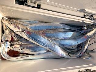 橋安丸の2021年2月7日(日)4枚目の写真