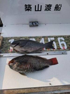 築山渡船の2021年2月7日(日)5枚目の写真