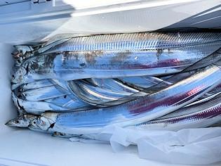 橋安丸の2021年2月10日(水)5枚目の写真