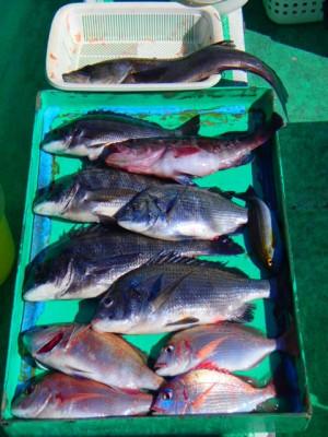 村井丸の2021年2月10日(水)4枚目の写真