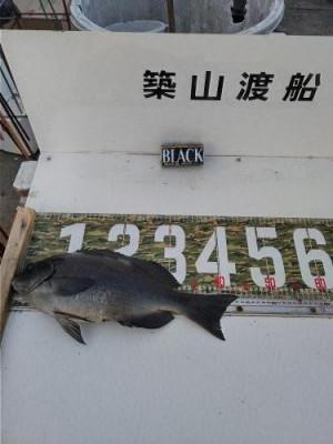築山渡船の2021年2月10日(水)1枚目の写真