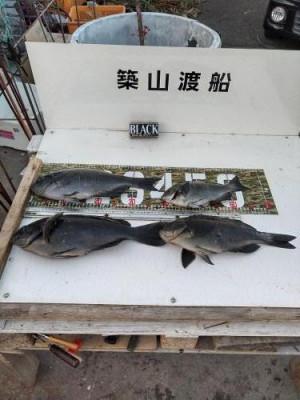 築山渡船の2021年2月10日(水)3枚目の写真