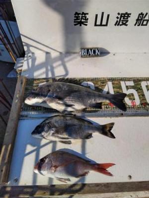 築山渡船の2021年2月10日(水)4枚目の写真