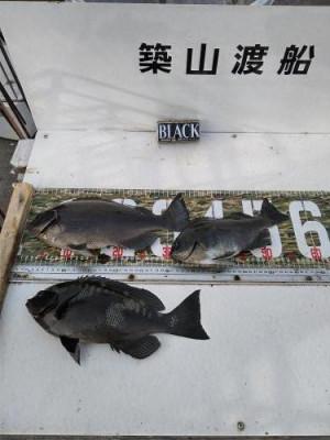 築山渡船の2021年2月11日(木)1枚目の写真