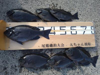 大ちゃん渡船の2021年2月8日(月)2枚目の写真