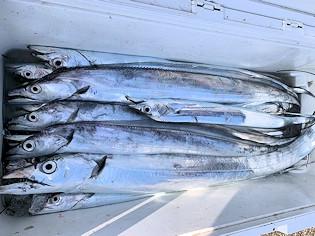 橋安丸の2021年2月13日(土)2枚目の写真