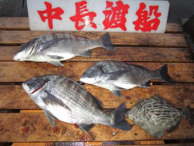 中長渡船の2021年2月13日(土)2枚目の写真