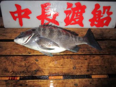 中長渡船の2021年2月13日(土)3枚目の写真