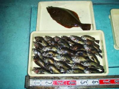 渡船 朝日丸の2021年2月13日(土)4枚目の写真