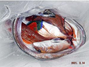 第一大漁丸の2021年2月14日(日)5枚目の写真