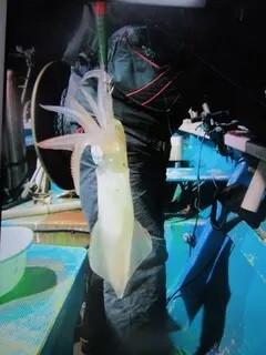 松福丸の2021年2月11日(木)3枚目の写真