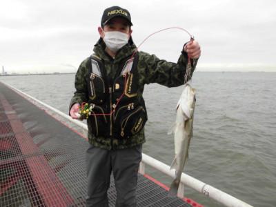 尼崎市立魚つり公園の2021年2月19日(金)1枚目の写真