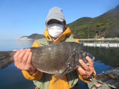 由良海つり公園&釣堀ランドの2021年2月20日(土)2枚目の写真