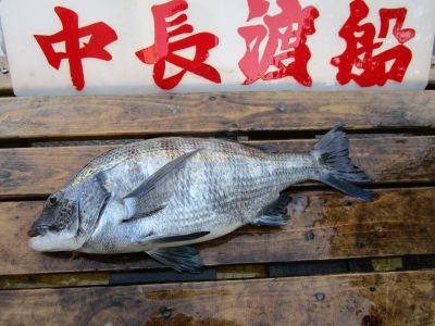 中長渡船の2021年2月20日(土)3枚目の写真