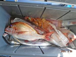 第一大漁丸の2021年2月20日(土)1枚目の写真