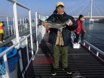 尼崎市立魚つり公園の2021年2月21日(日)1枚目の写真