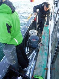 第一大漁丸の2021年2月21日(日)5枚目の写真