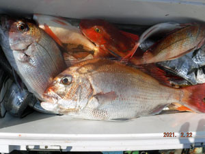 第一大漁丸の2021年2月22日(月)2枚目の写真
