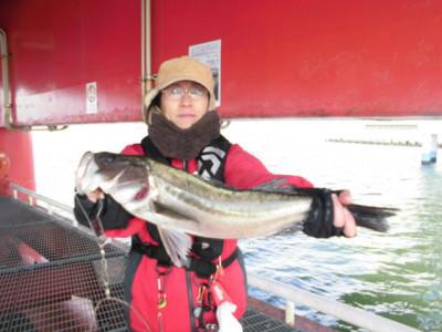 尼崎市立魚つり公園の2021年2月23日(火)1枚目の写真