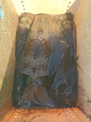 イカダ・マルキの2021年2月20日(土)2枚目の写真