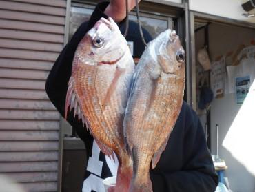 奥村釣船の2021年2月24日(水)2枚目の写真
