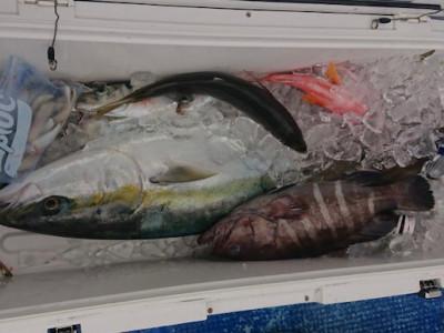 フィッシングボート 清和丸の2021年2月25日(木)3枚目の写真
