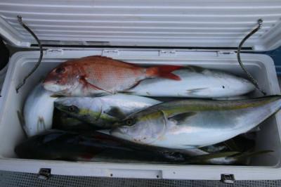 西岡遊漁の2021年2月23日(火)5枚目の写真