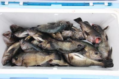 西岡遊漁の2021年2月25日(木)4枚目の写真