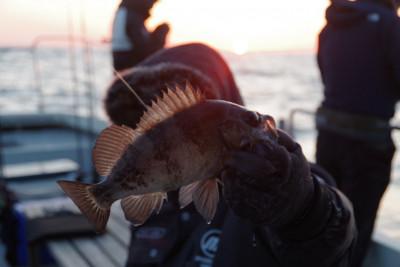 松島シーネットの2021年2月28日(日)2枚目の写真