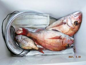 第一大漁丸の2021年2月28日(日)3枚目の写真