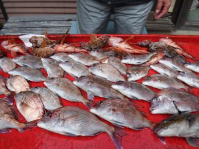 奥村釣船の2021年2月28日(日)3枚目の写真
