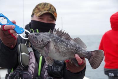 松島シーネットの2021年3月20日(土)3枚目の写真