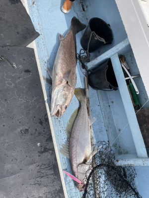 第五慶門丸の2021年3月17日(水)5枚目の写真