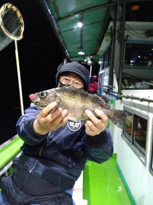 小島丸の2021年4月1日(木)2枚目の写真