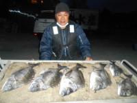 野村渡船の2021年4月6日(火)2枚目の写真