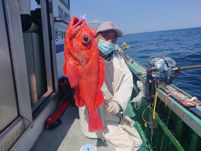 渡辺丸の2021年4月7日(水)2枚目の写真