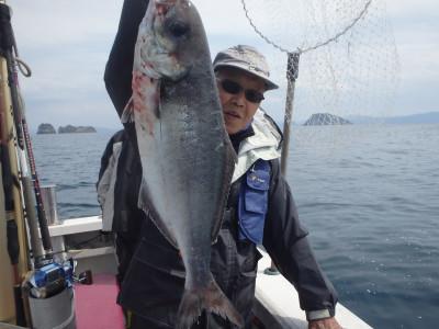 秀吉丸の2021年4月8日(木)5枚目の写真