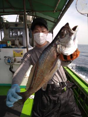 小島丸の2021年4月8日(木)2枚目の写真