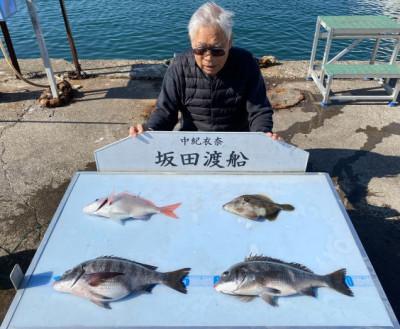 坂田渡船の2021年4月7日(水)2枚目の写真