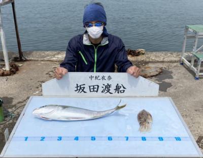 坂田渡船の2021年4月8日(木)2枚目の写真