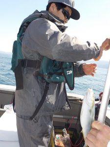 美浜釣舟センターの2021年4月11日(日)3枚目の写真
