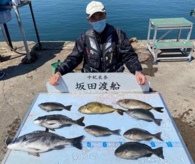 坂田渡船の2021年4月11日(日)5枚目の写真